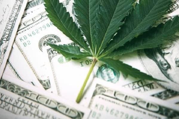How to Invest in Marijuana Stocks in 2021?